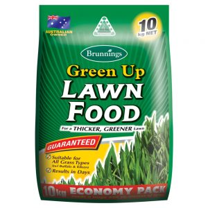 Lawn Seed & Food